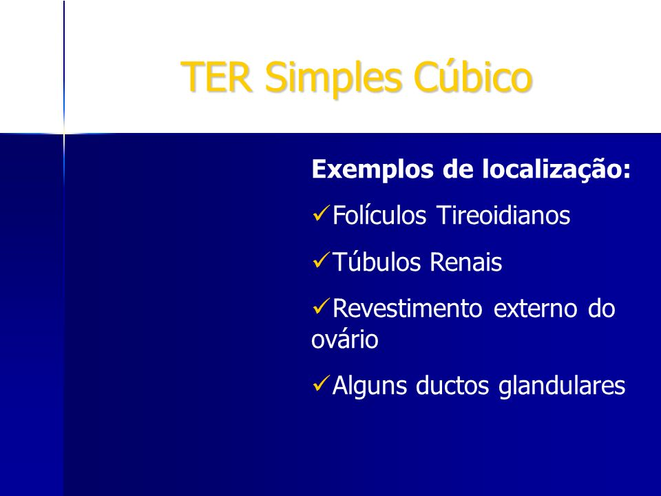 TER Simples Cúbico Exemplos de localização: Folículos Tireoidianos