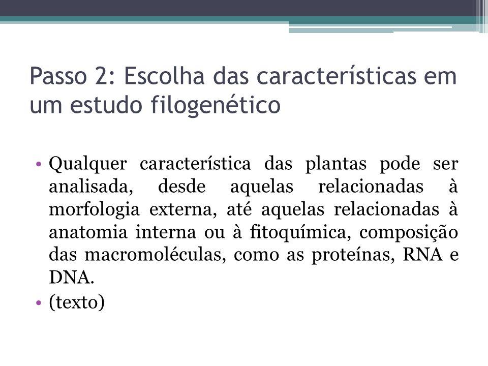 Passo 2: Escolha das características em um estudo filogenético