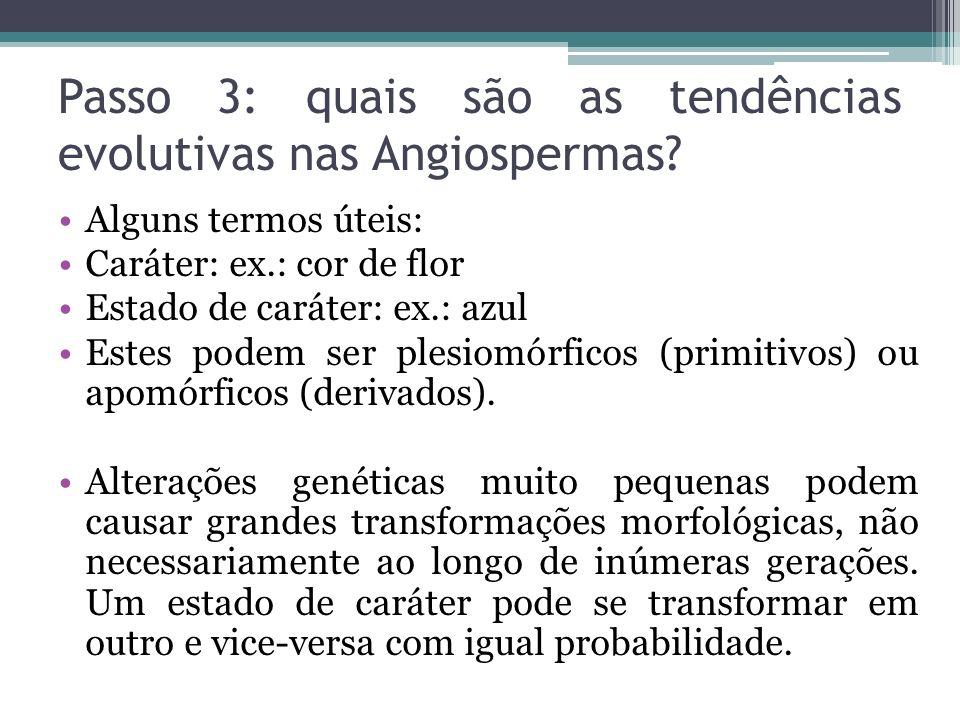 Passo 3: quais são as tendências evolutivas nas Angiospermas