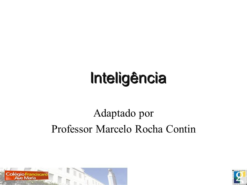 Professor Marcelo Rocha Contin