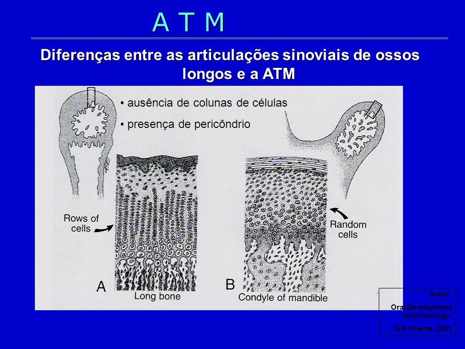 Diferenças entre as articulações sinoviais de ossos longos e a ATM