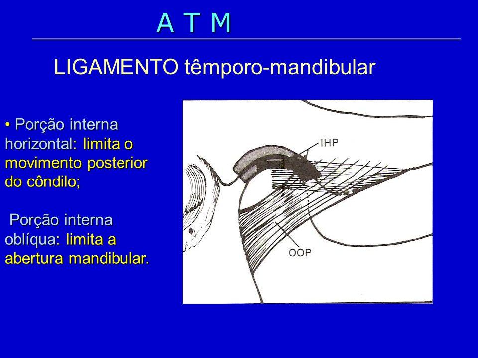 LIGAMENTO têmporo-mandibular
