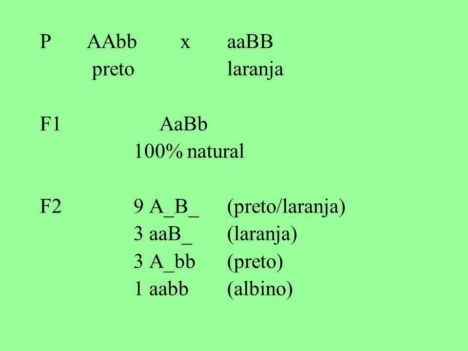 P AAbb x aaBB preto laranja. F1 AaBb. 100% natural. F2 9 A_B_ (preto/laranja) 3 aaB_ (laranja)