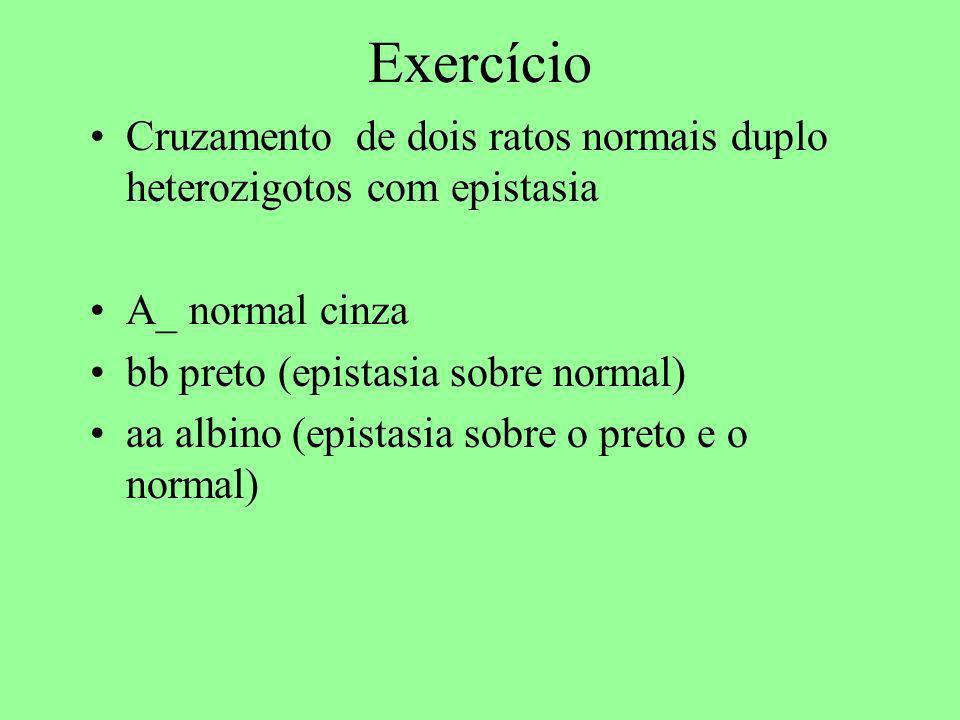 Exercício Cruzamento de dois ratos normais duplo heterozigotos com epistasia. A_ normal cinza. bb preto (epistasia sobre normal)