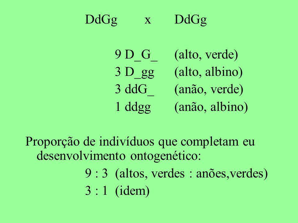 DdGg x DdGg 9 D_G_ (alto, verde) 3 D_gg (alto, albino) 3 ddG_ (anão, verde) 1 ddgg (anão, albino)