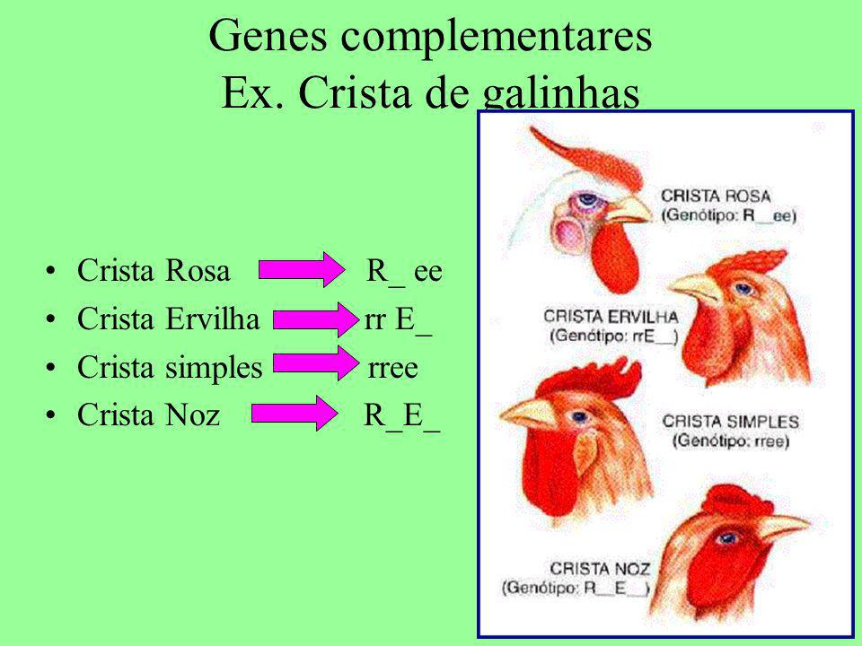 Genes complementares Ex. Crista de galinhas