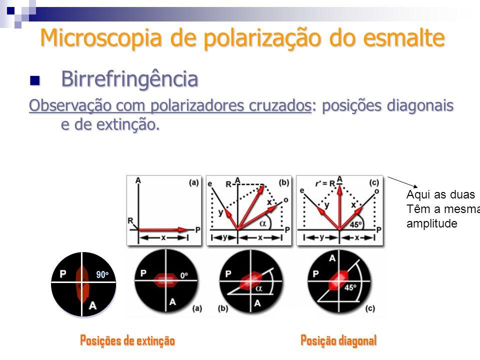 Microscopia de polarização do esmalte
