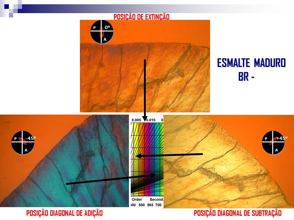ESMALTE MADURO BR - POSIÇÃO DE EXTINÇÃO POSIÇÃO DIAGONAL DE ADIÇÃO