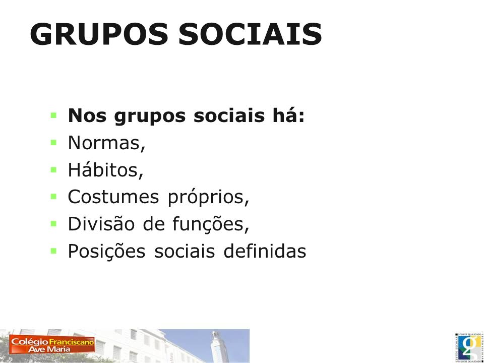 GRUPOS SOCIAIS Nos grupos sociais há: Normas, Hábitos,