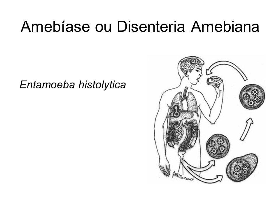 Amebíase ou Disenteria Amebiana