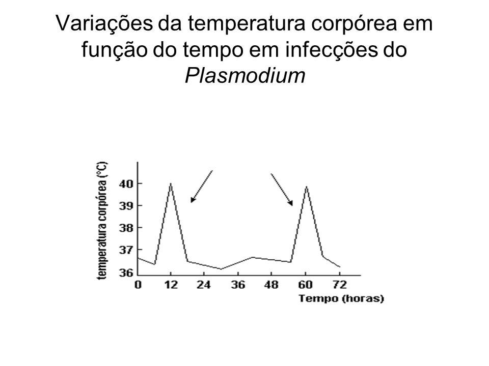 Variações da temperatura corpórea em função do tempo em infecções do Plasmodium