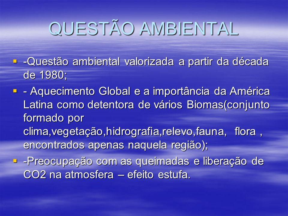 QUESTÃO AMBIENTAL -Questão ambiental valorizada a partir da década de 1980;