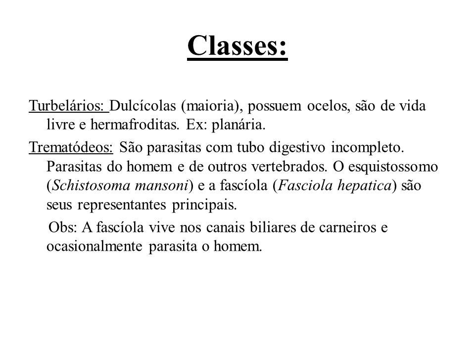 Classes: