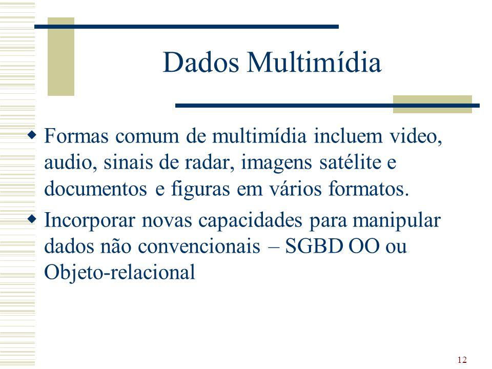 Dados Multimídia Formas comum de multimídia incluem video, audio, sinais de radar, imagens satélite e documentos e figuras em vários formatos.