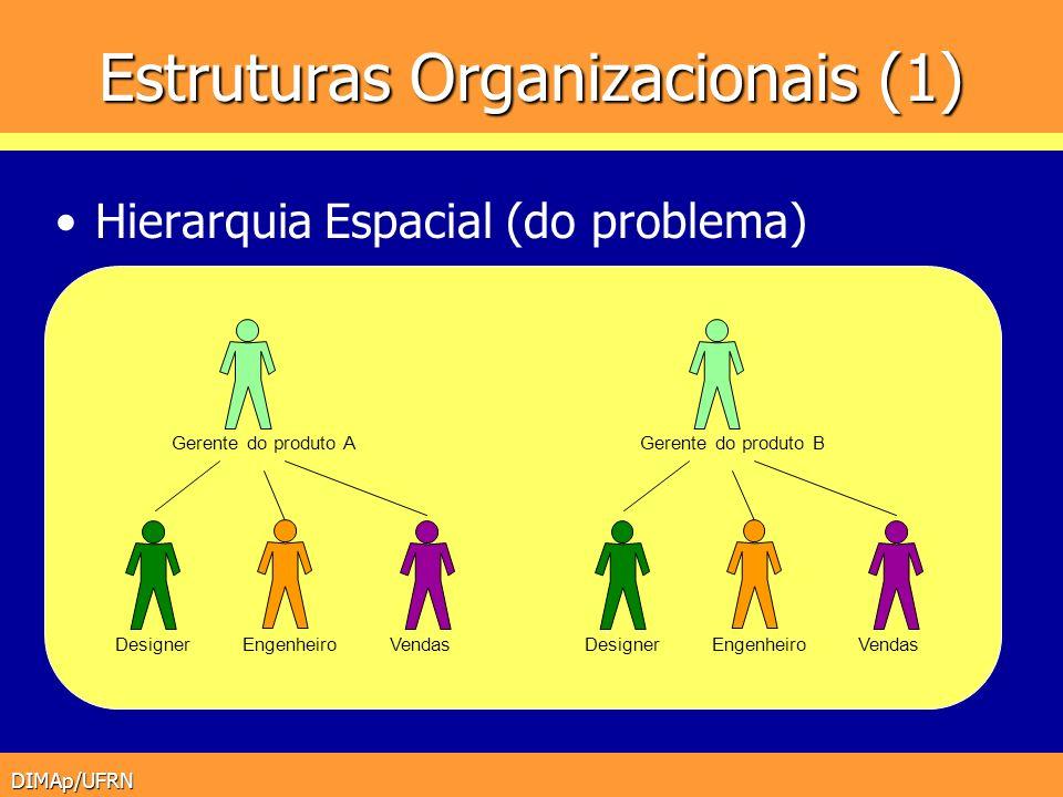 Estruturas Organizacionais (1)