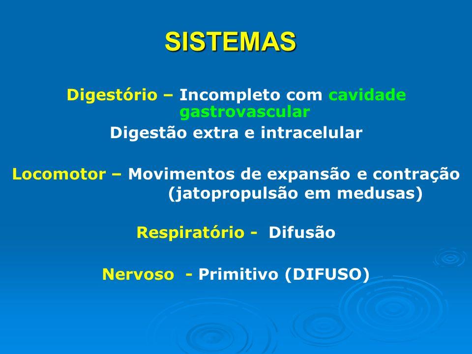 SISTEMAS Digestório – Incompleto com cavidade gastrovascular