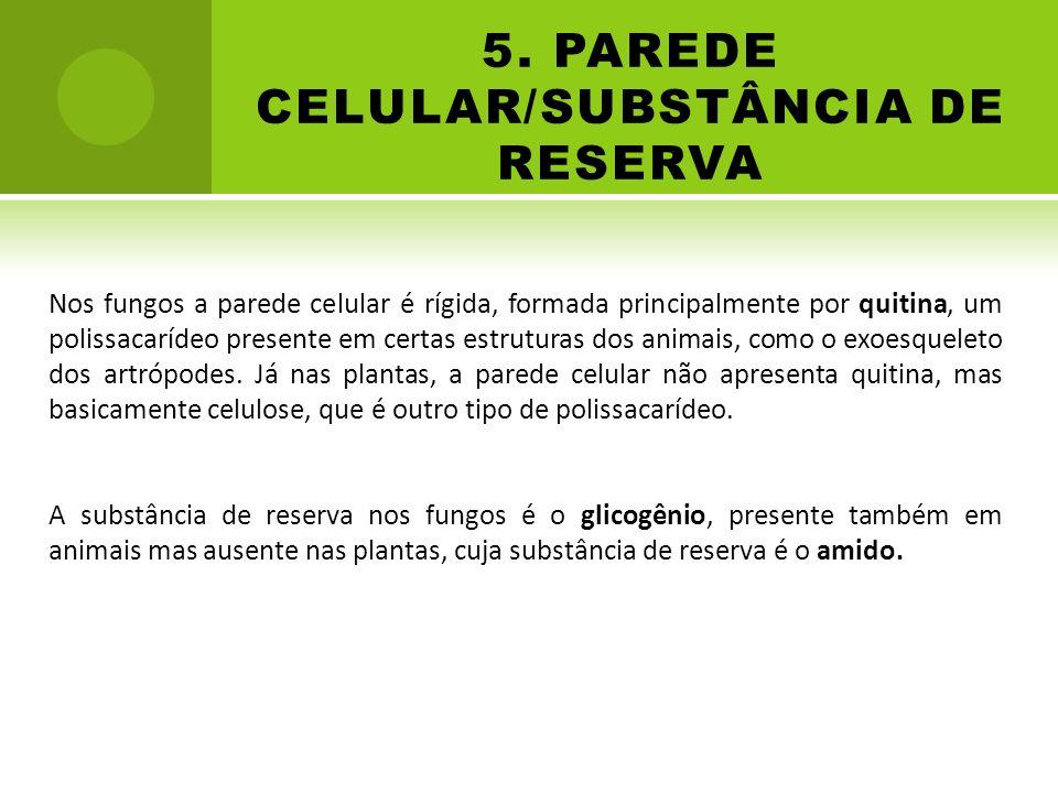 5. PAREDE CELULAR/SUBSTÂNCIA DE RESERVA