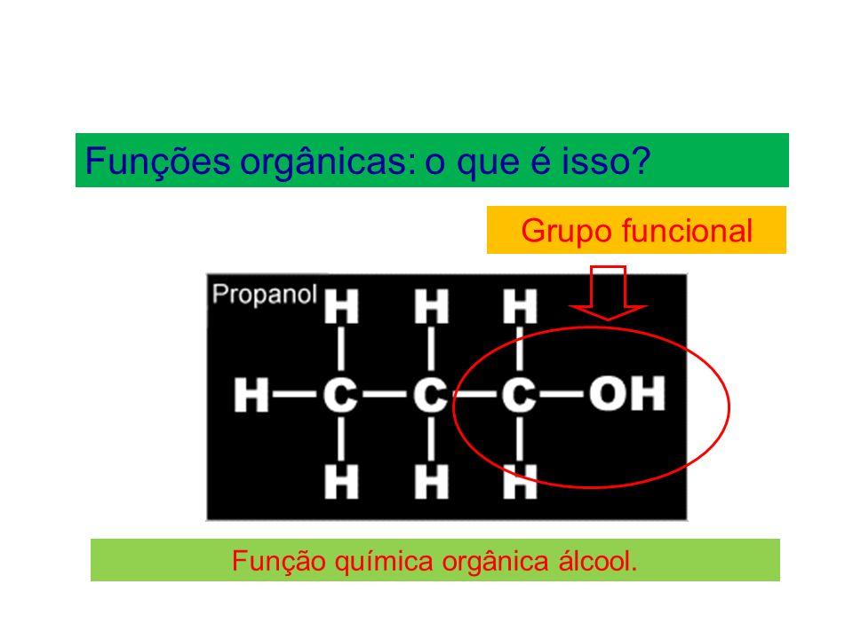 Função química orgânica álcool.