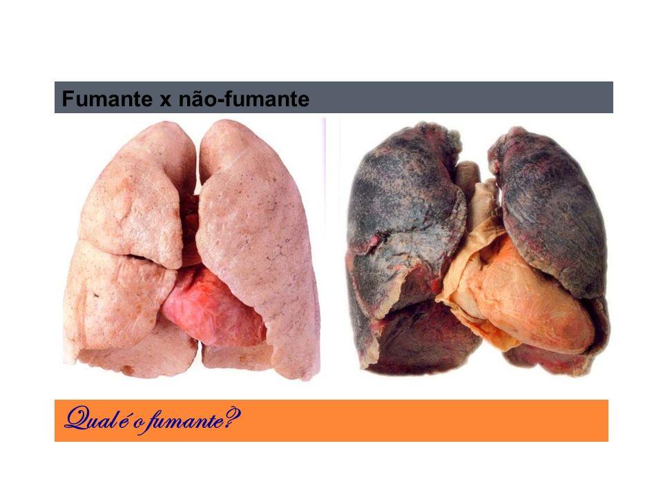 Fumante x não-fumante Qual é o fumante
