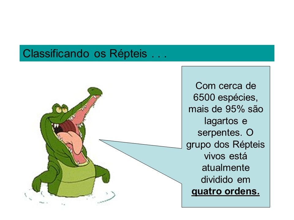 Classificando os Répteis . . .