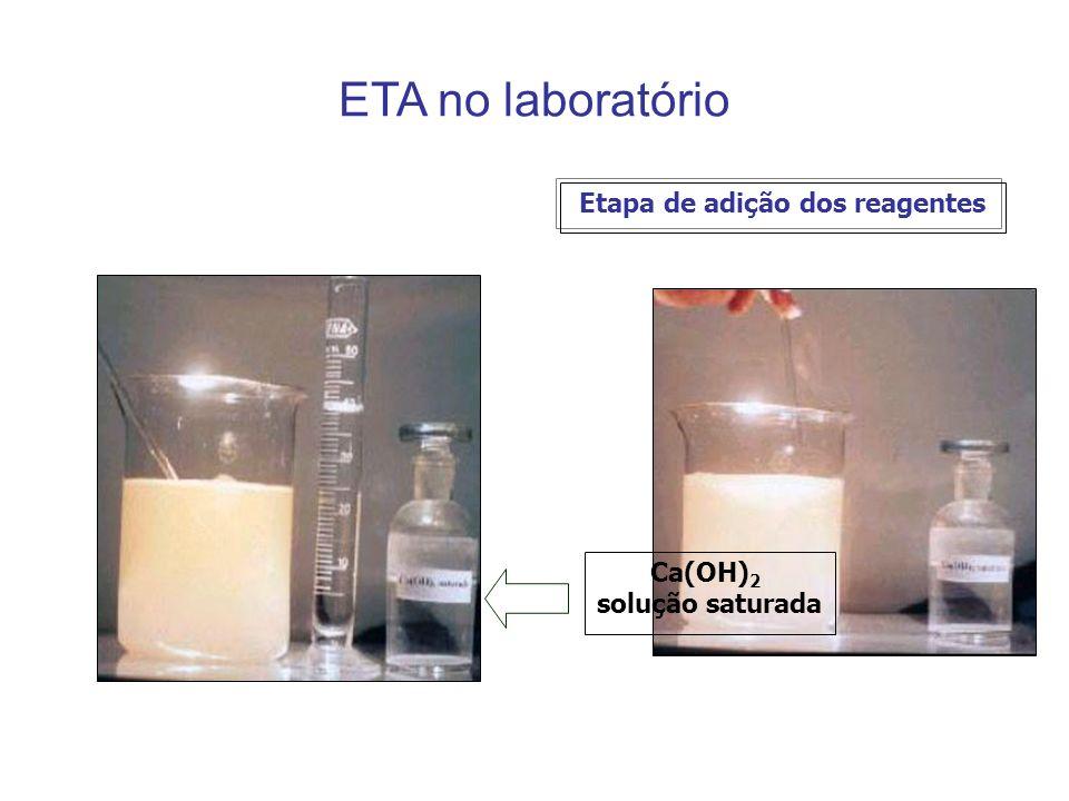 Etapa de adição dos reagentes