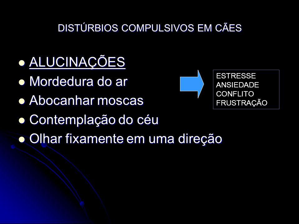 DISTÚRBIOS COMPULSIVOS EM CÃES
