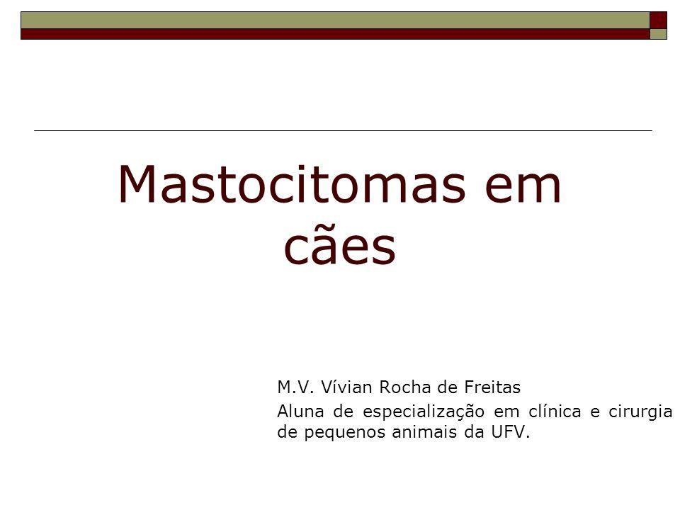 Mastocitomas em cães M.V. Vívian Rocha de Freitas