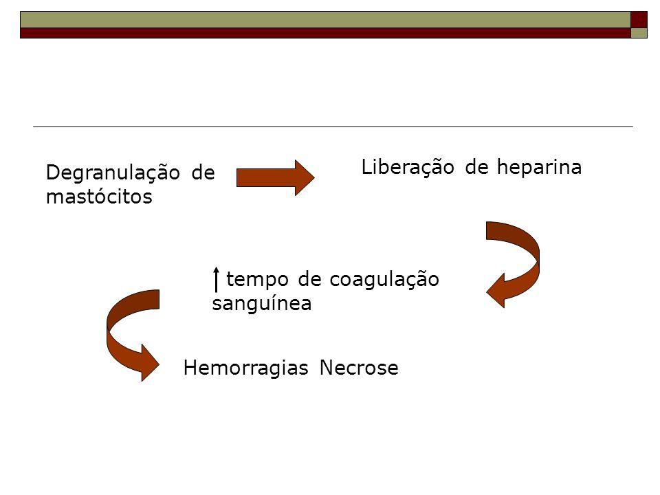 Liberação de heparina Degranulação de mastócitos tempo de coagulação sanguínea Hemorragias Necrose