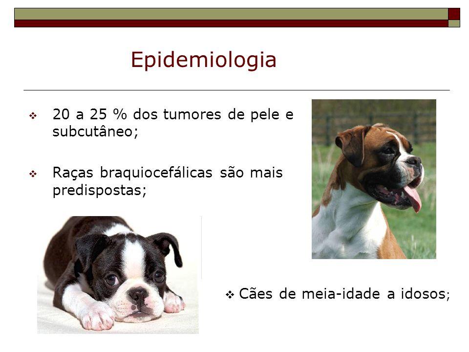Epidemiologia 20 a 25 % dos tumores de pele e subcutâneo;