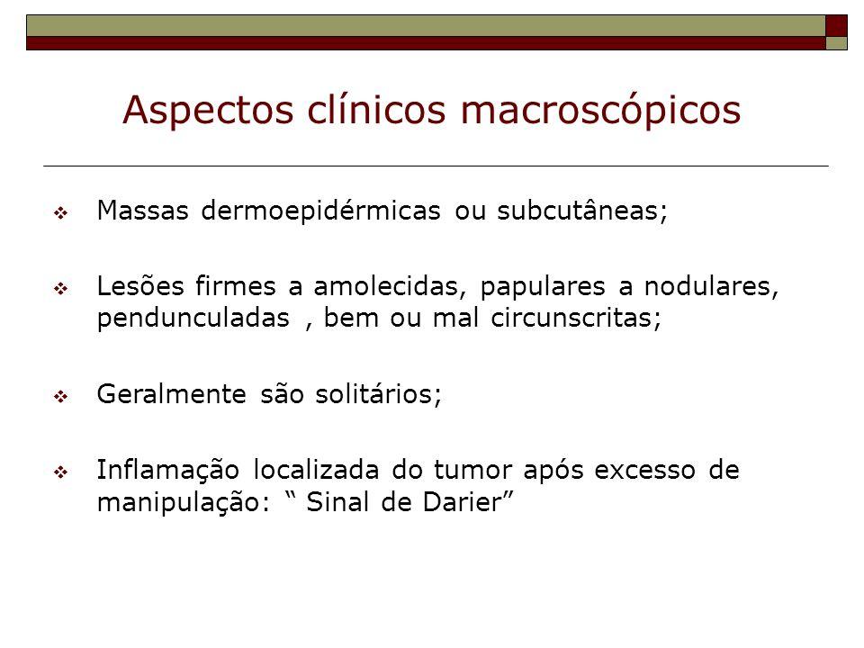 Aspectos clínicos macroscópicos