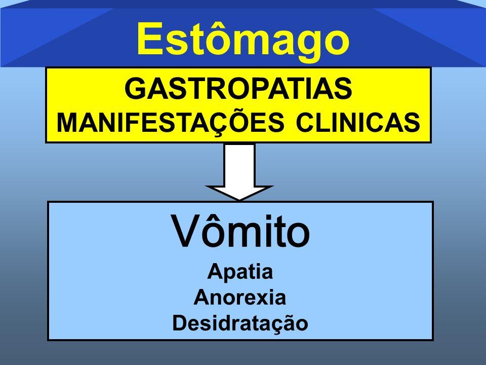 GASTROPATIAS MANIFESTAÇÕES CLINICAS