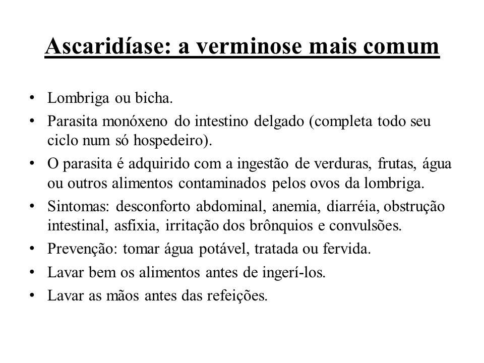 Ascaridíase: a verminose mais comum