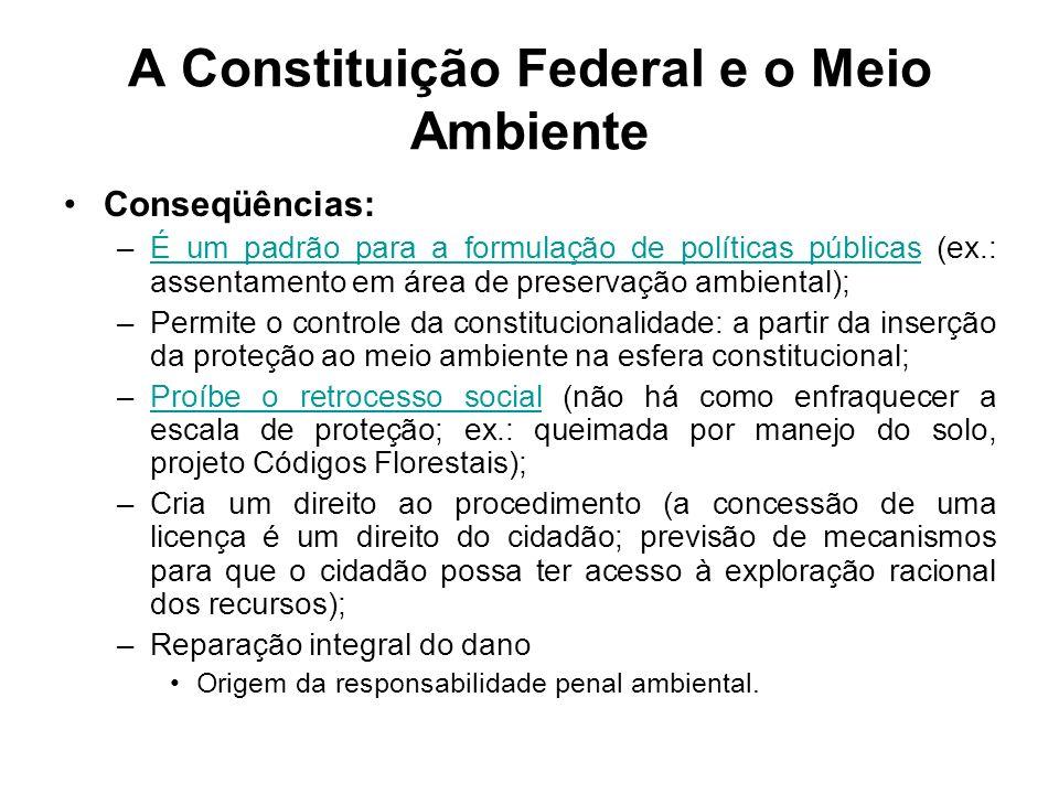 A Constituição Federal e o Meio Ambiente