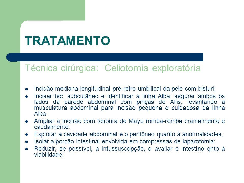 TRATAMENTO Técnica cirúrgica: Celiotomia exploratória