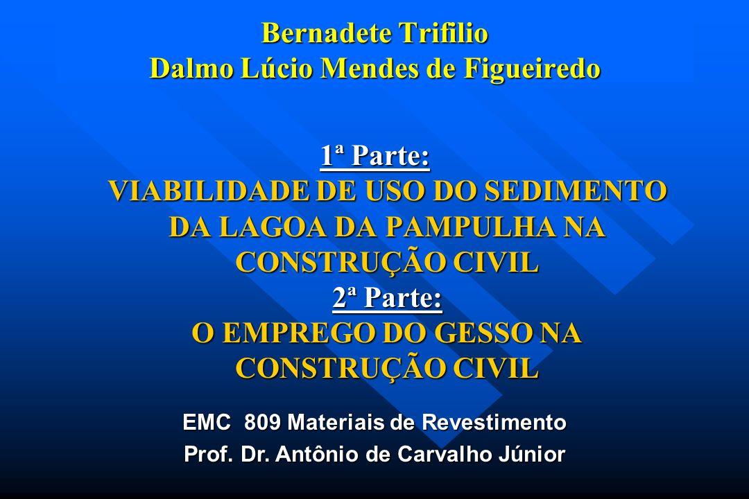 Bernadete Trifilio Dalmo Lúcio Mendes de Figueiredo
