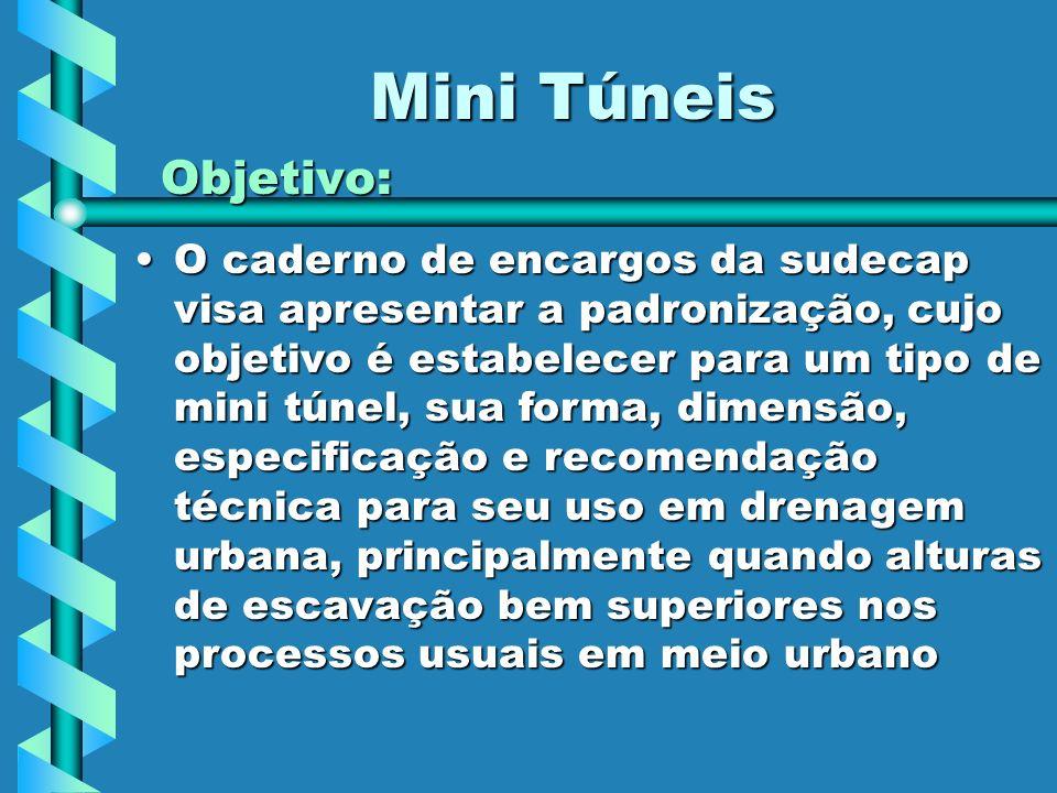 Mini Túneis Objetivo: