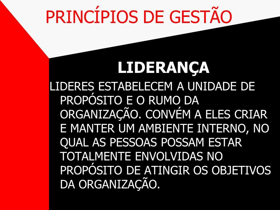 PRINCÍPIOS DE GESTÃO LIDERANÇA
