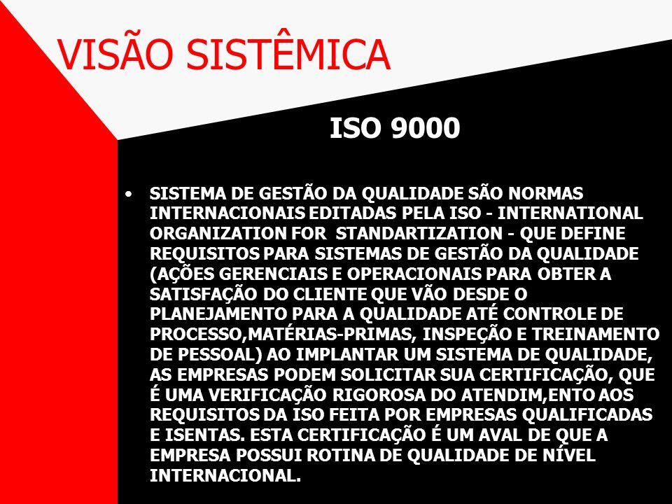 VISÃO SISTÊMICA ISO 9000.