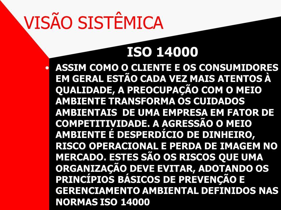 VISÃO SISTÊMICA ISO 14000.