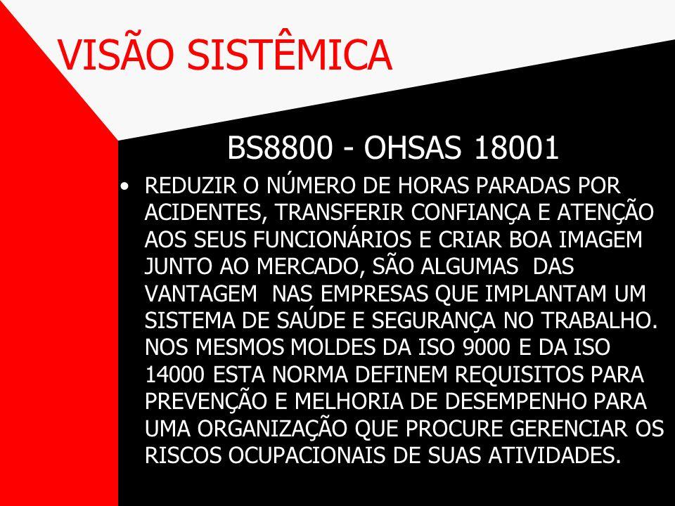 VISÃO SISTÊMICA BS8800 - OHSAS 18001