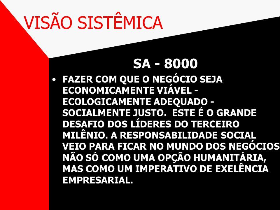 VISÃO SISTÊMICA SA - 8000.