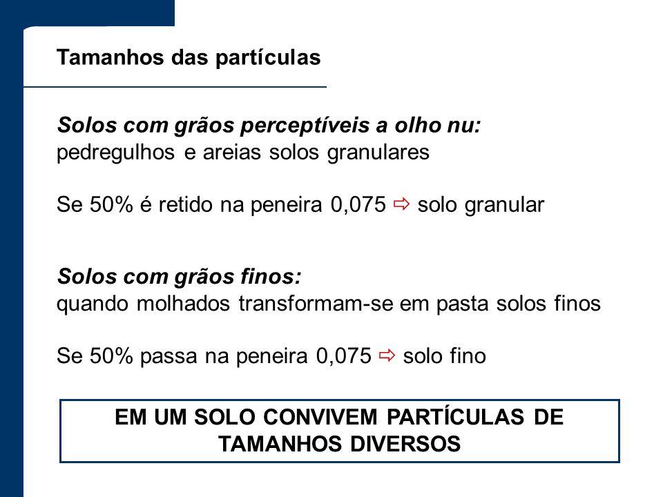 EM UM SOLO CONVIVEM PARTÍCULAS DE TAMANHOS DIVERSOS
