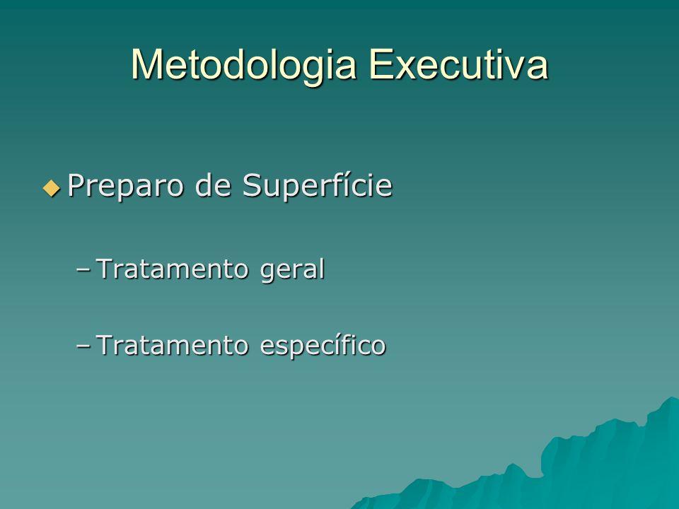 Metodologia Executiva