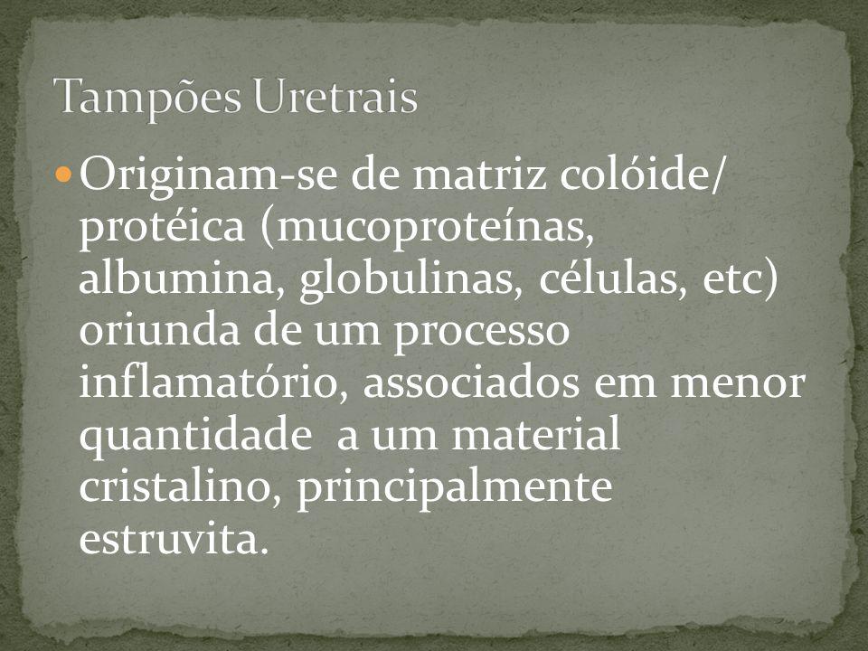 Tampões Uretrais