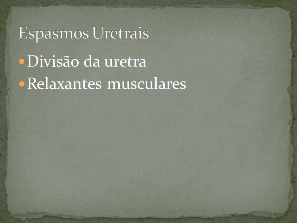 Espasmos Uretrais Divisão da uretra Relaxantes musculares