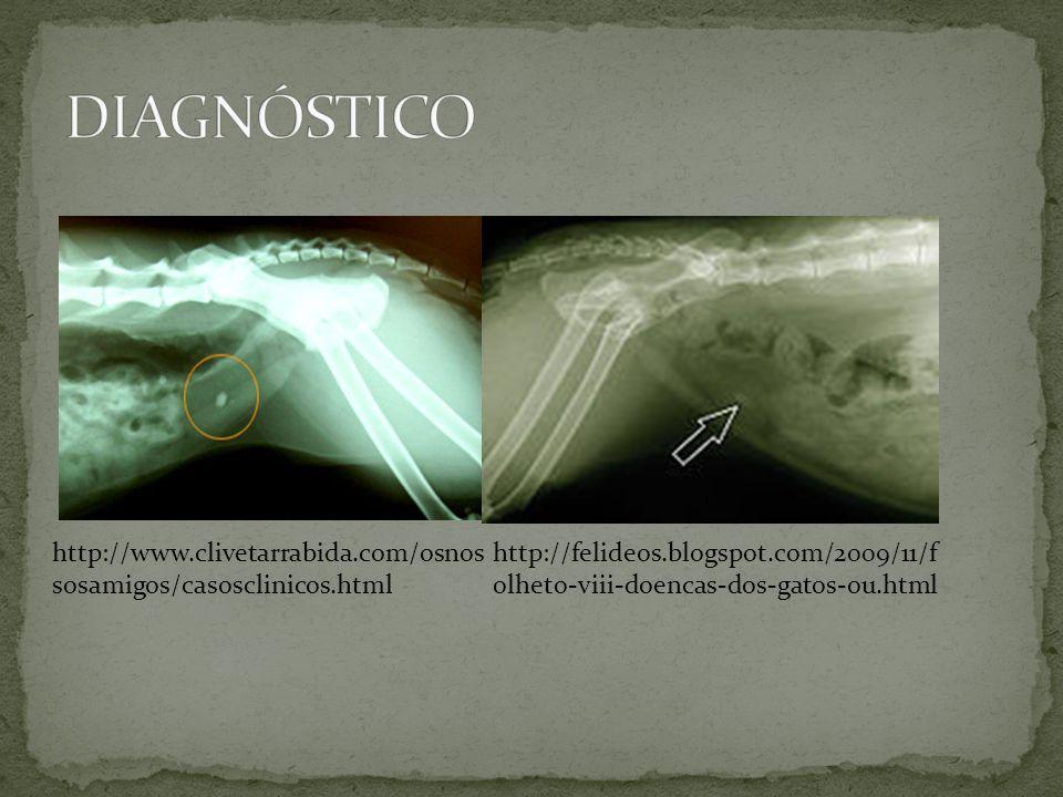 DIAGNÓSTICO http://www.clivetarrabida.com/osnossosamigos/casosclinicos.html.