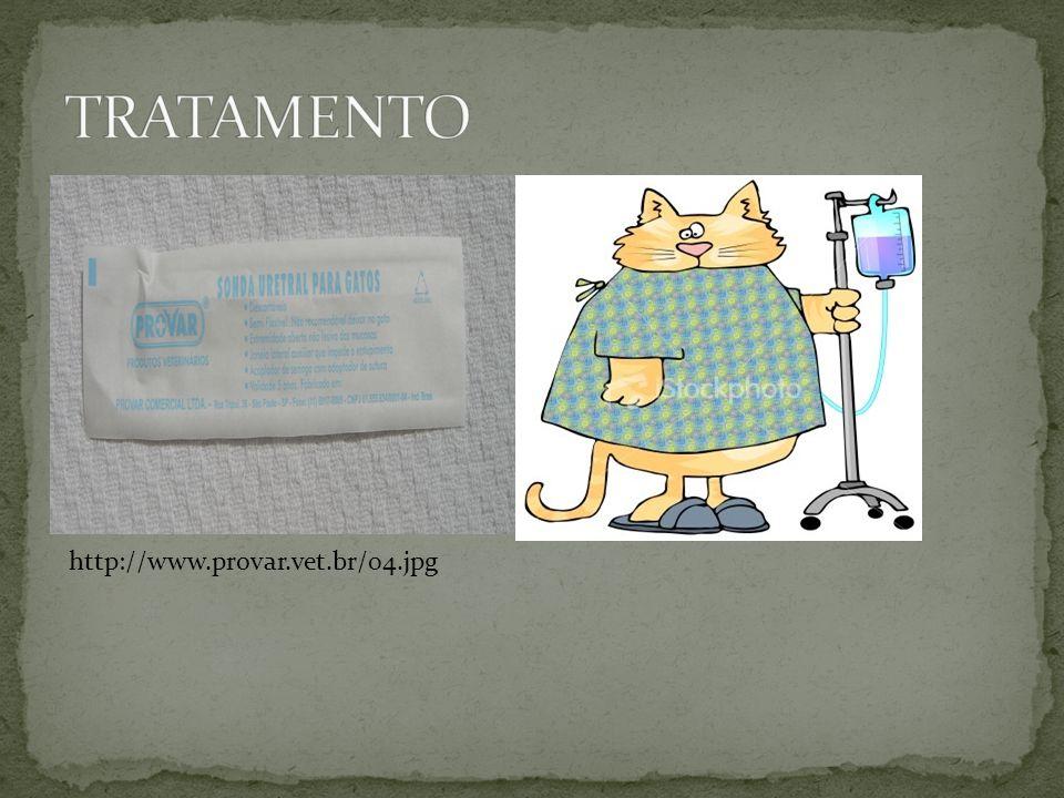 TRATAMENTO http://www.provar.vet.br/04.jpg