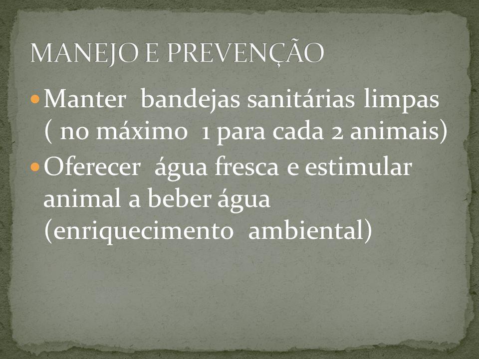 MANEJO E PREVENÇÃO Manter bandejas sanitárias limpas ( no máximo 1 para cada 2 animais)