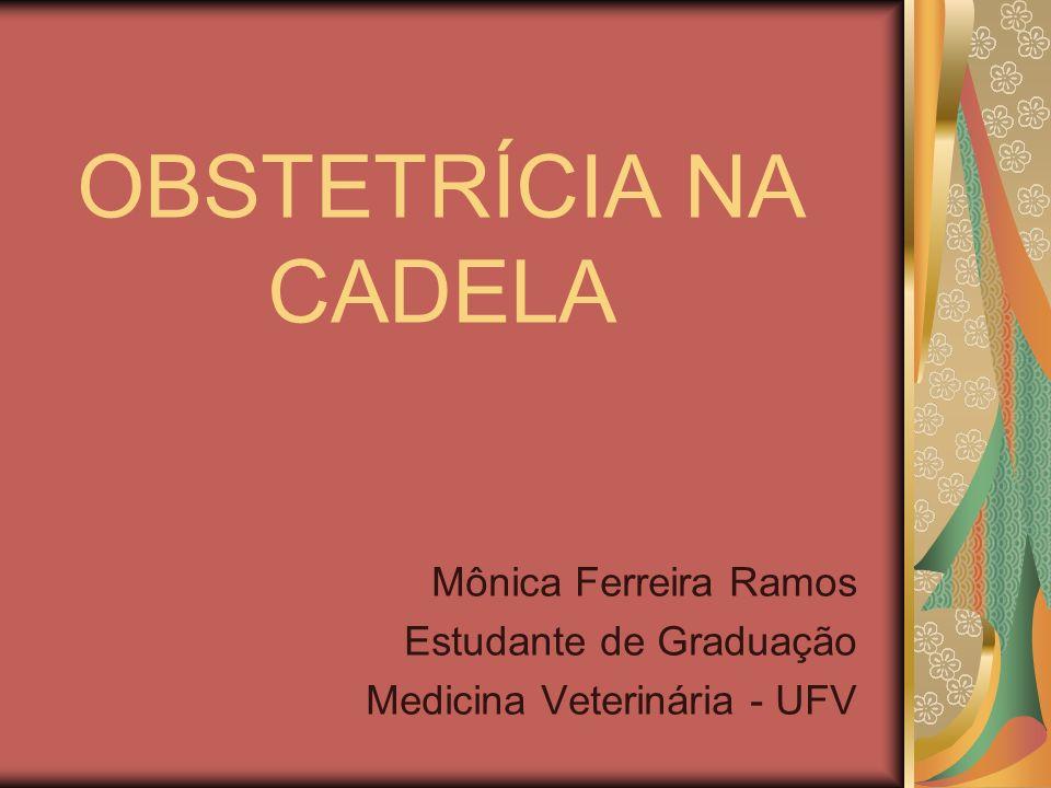 OBSTETRÍCIA NA CADELA Mônica Ferreira Ramos Estudante de Graduação