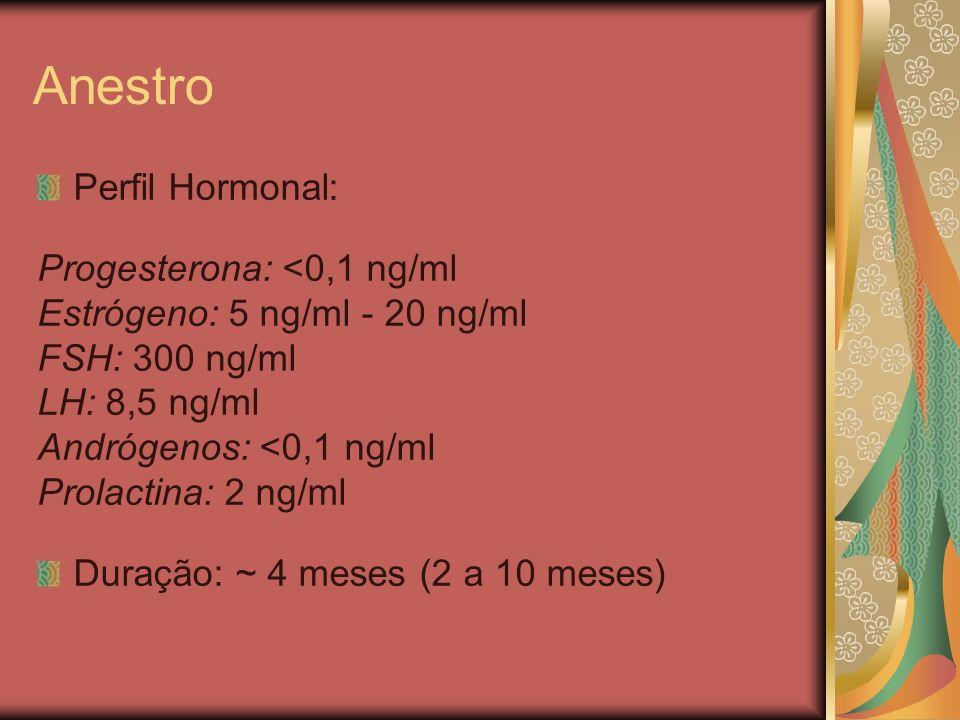 Anestro Perfil Hormonal: Progesterona: <0,1 ng/ml